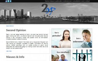 Website consultancy bureau 2op online!